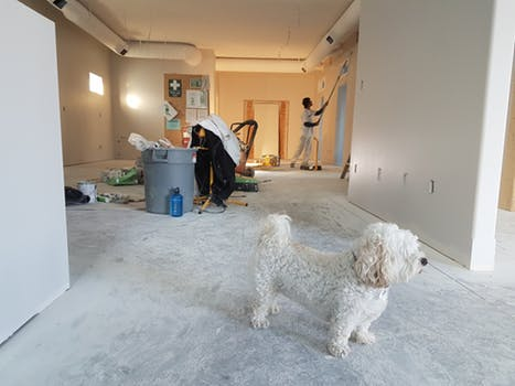 Tips for Finding the Right Painting Contractor in Denver