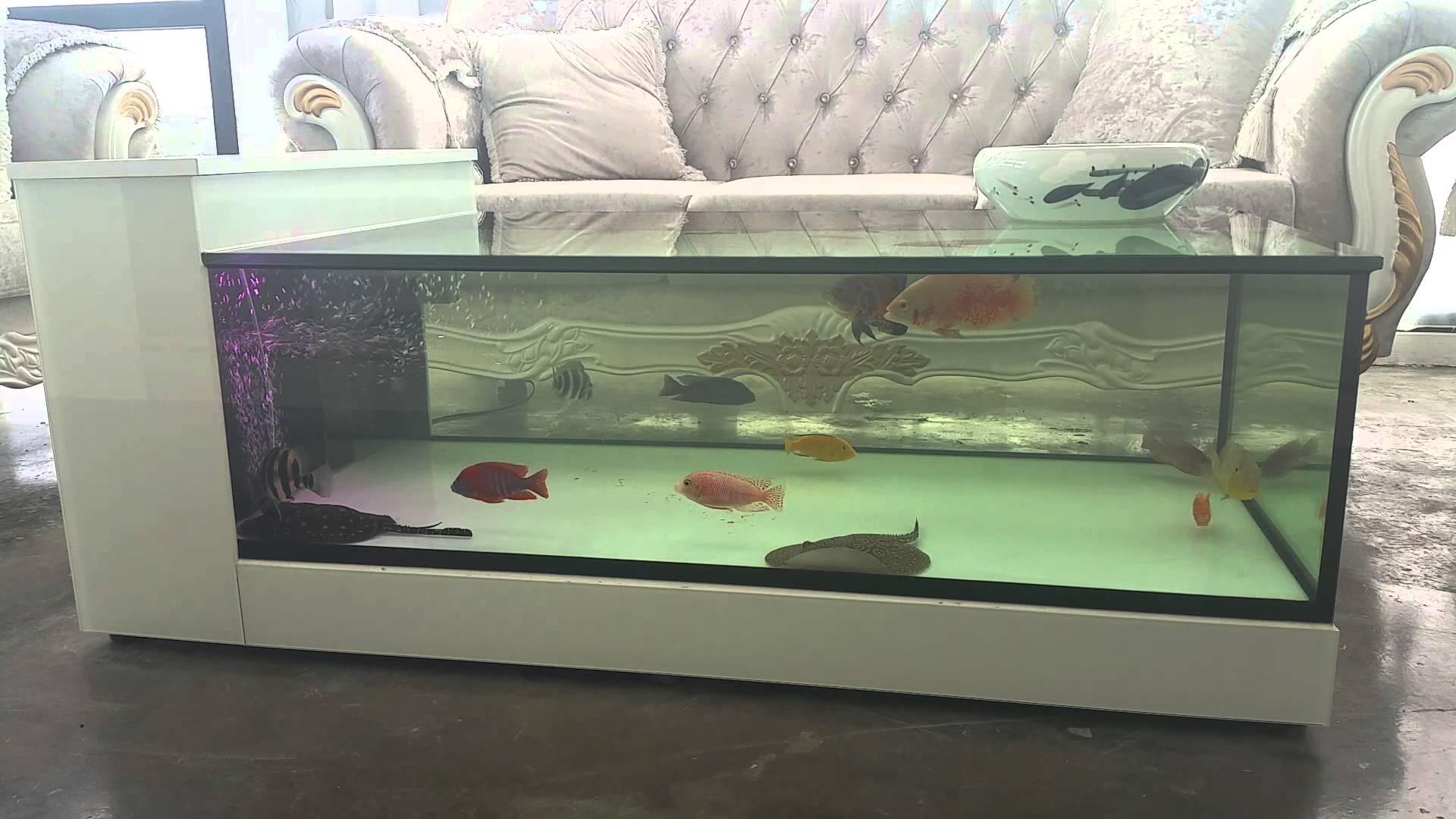 aquariumcoffee table